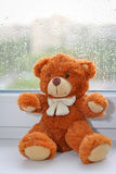 Plush Teddy Bear toy Royalty Free Stock Photo
