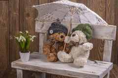 Plush Teddy bears couple Stock Images