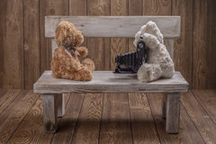 Plush Teddy bears photographer Royalty Free Stock Photos