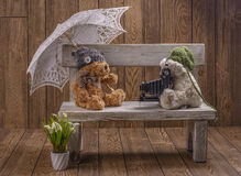 Plush Teddy bears photographer Stock Photo