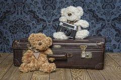 Plush Teddy bears. In room Stock Image