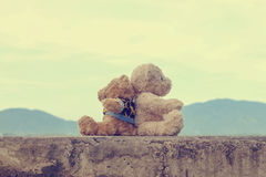 Plush Teddy bears vintage style. For web design and background Stock Images