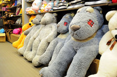 Plush toy. Toy teddy bear in a store Stock Images