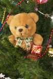 Plush toy bear in the banch Stock Photo