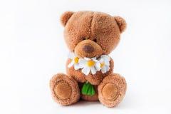 Plush toy bear Royalty Free Stock Photography
