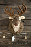 Plush toy deer on a wooden wall with xmas balls Royalty Free Stock Images