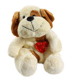 Plush toy dog Royalty Free Stock Photography