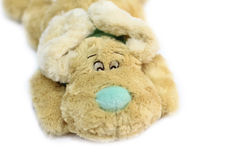 Plush toy dog Royalty Free Stock Photos