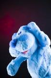 Plush toy dog. Blue soft plush toy dog with red background stock image