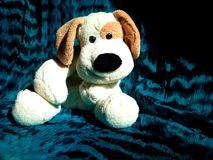 Plush toy dog with big ears and a big black nose  . Plush toy dog with big ears  and a big black nose on a beautiful turquoise background Stock Image