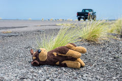 Plush toy dog thrown away. Highway car pass by brown plush toy dog thrown away by spoiled child Royalty Free Stock Photos