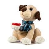 Plush toy dog on a white background.  Royalty Free Stock Photography