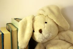 A plush toy with floppy ears leans its head on a row of books. A soft plush toy rabbit resting its head on arow of standing books stock images