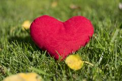 Plush Toy - Heart. A great gift for Valentine`s Day. Shows love. stock photos