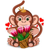Plush toy monkey with basket of tulips Stock Photo