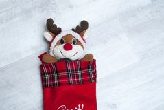 Plush toy reindeer in a Christmas sock on wooden background, Stock Photo