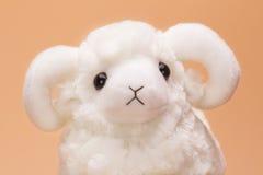 Plush toy sheep Royalty Free Stock Photo