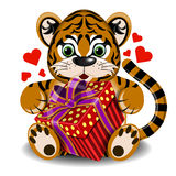 Plush toy tiger in love with box gift Royalty Free Stock Image