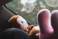 Plush toys in front of the rear window of a car. Reflections of the smiling toy muzzle. Blurred tree behind the window with beautiful bokeh circles. The royalty free stock images