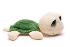 Plush turtle. Toy isolated on white background Royalty Free Stock Photo