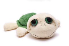 Plush turtle. Toy isolated on white background Stock Photos
