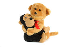 2 plushy игрушки стоковое фото rf
