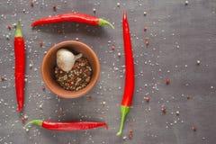Plusieurs bols ronds brûlants de poivrons rouges avec des épices dans une table foncée Photographie stock