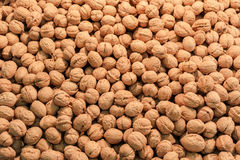 Plusieurs de noix sur la table Image libre de droits