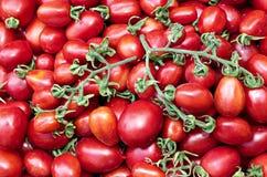 Plusieurs de tomates rouges mûres juteuses Images stock