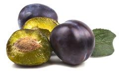 Plusieurs prunes mûres entières avec un drain ouvert avec un os Photo libre de droits