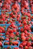 Plusieurs récipients bleus de pinte ont rempli de fraises saisonnières Photo libre de droits