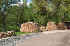 Plusieurs tas de bois rond photo libre de droits