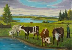 Plusieurs vaches se tenant prêt l'eau pour boire illustration stock