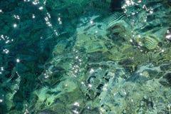 Pluskocząca turkus wody powierzchnia, raj woda w lecie obrazy stock