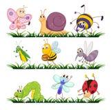 Pluskw serie ilustracji