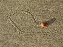 Pluskwa robi remisom w piasku Obraz Royalty Free