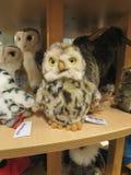 Pluszowy zabawka sklep z pluszowymi zwierzętami na pokazie w Hamburg Zdjęcie Stock