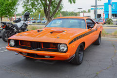 Plymouth Barracuda classic car on display Stock Image