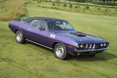 Cuda. Picture of violet 1971 plymouth hemi cuda with shaker Hood Royalty Free Stock Photo