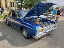 Plymouth Rock royalty-vrije stock afbeelding
