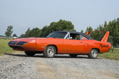 Plymouth superbird Stock Photography