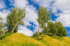 Plyos的本质:树在小山和蓝天站立与云彩 库存照片