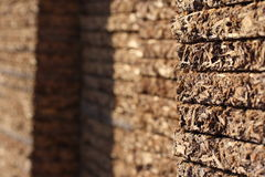 Plywood. A close-up photo of plywood Royalty Free Stock Photo