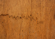 Plywood cracks. Royalty Free Stock Photo