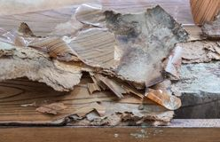 Plywood peel is peeling from the concrete cabinet. royalty free stock images