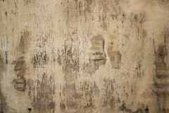 Plywood surface texture background. Royalty Free Stock Photos