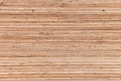 Plywood texture background Stock Images