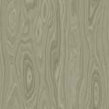 Plywood white. Seamless high quality high resolution plywood background Royalty Free Stock Image