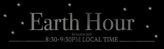9:30 PM da hora da terra 30 de março de 2019 8:30 - ilustração stock