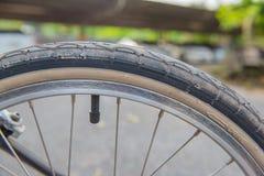 Pneu marrom da bicicleta do close up fragmento da roda da bicicleta Imagem de Stock